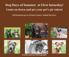 Dog Days of Summer at First Saturday! (1)