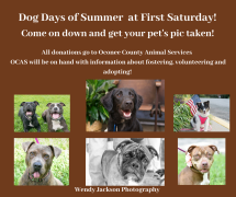 Dog Days of Summer at First Saturday!